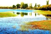 甘州区黑河湿地国家级自然保护区