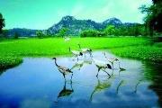 广东星湖国家湿地公园
