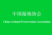 中国湿地协会